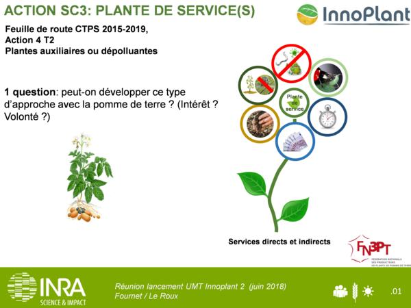 diapo_plante_de_service(s)